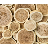 Branch Discs Assorted Pack - 20 - 60mm Diameter