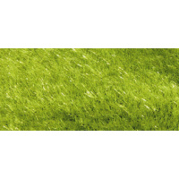 Static Spring Grass 4mm